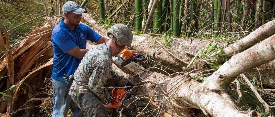 A U.S. Marine and a local resident work together to clear a tree from the main road as part of Hurricane Maria relief efforts in Ceiba Puerto Rico