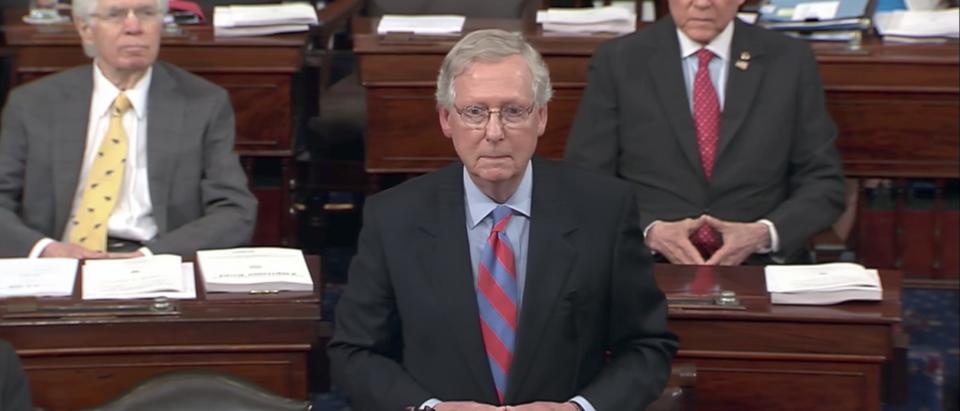 Senate Majority Leader Mitch McConnell speaks on the Senate floor in July 2017. (YouTube screenshot/PBS NewsHour)