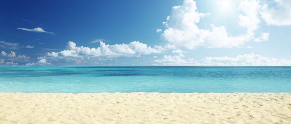 tropical beach beachbackgroundsummerseaskysunnyshorelandscapehorizondayoceansandsunshinecaribbeanhottropicalbluescenicislandsunwaterrelaxyellowwavewhiteclearcoastpeacevacationbeautifulsplashseasonbayoutdoornatureresortbeautyclouddominicannaturalparadiserelaxationseascapesunlightsurftourismtraveltropicShow more(Shutterstock)