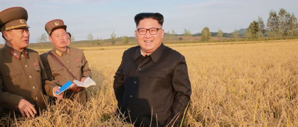 North Korean leader Kim Jong Un visits a Farm No. 1116 of KPA Unit 810