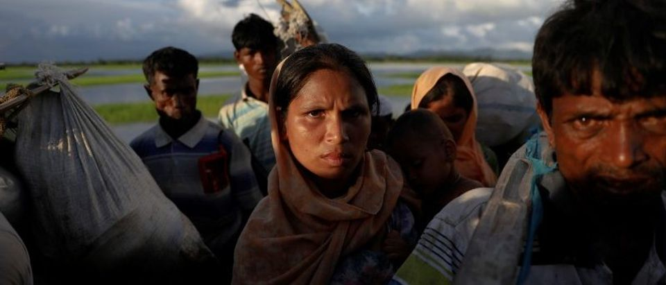 Rohingya refugees who fled from Myanmar wait in the rice field to be let through after after crossing the border in Palang Khali