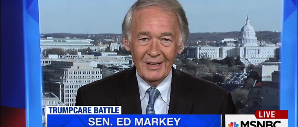 Democratic Sen. Ed Markey On MSNBC (Screenshot-MSNBC)