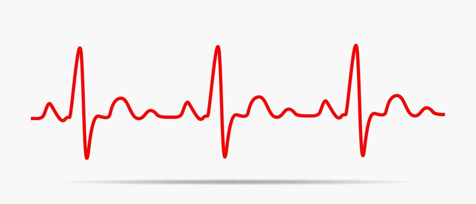 Red heartbeat icon. Vector illustration. Heartbeat sign in flat design. (Shutterstock/Haali).