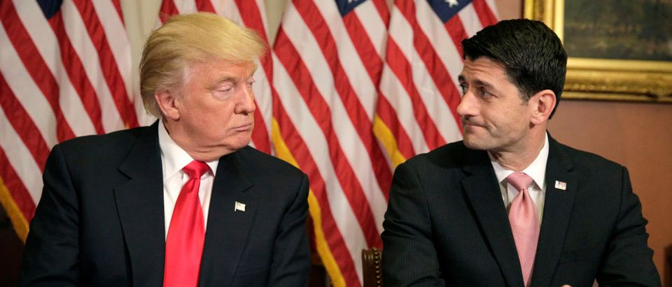 U.S. President-elect Donald Trump (L) meets with Speaker of the House Paul Ryan (R-WI) on Capitol Hill in Washington, U.S., November 10, 2016. REUTERS/Joshua Roberts