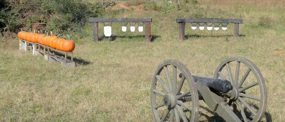 Cannon vs. Pumpkins (Credit: Screenshot/YouTube IraqVeteran8888)