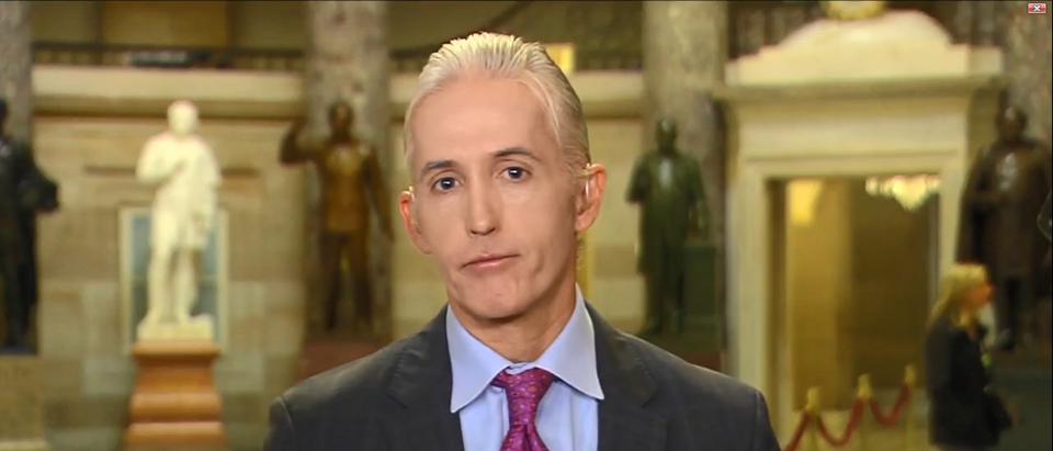 Trey Gowdy Gives Mueller Vote Of Confidence 'America's Newsroom' 10-25-17 (Screenshot-Fox News)