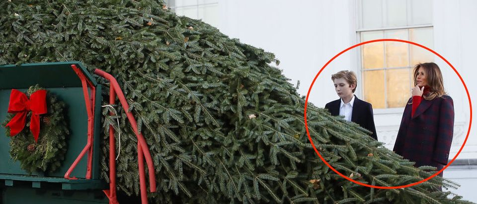 First Lady Melania Trump Receives White House Christmas Tree