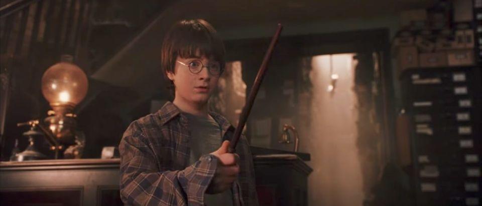 Harry Potter (Credit: Screenshot/YouTube HBO)