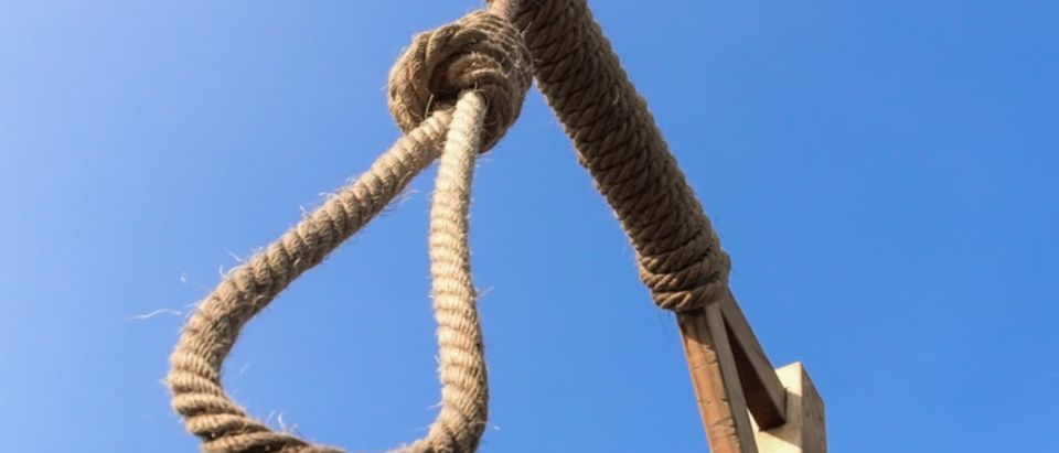Gallows and hangman noose are featured against a blue sky (Shutterstock/Songsak P)