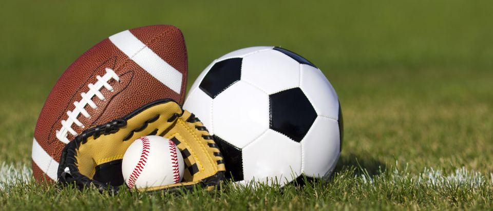 Sports balls on the field with yard line
