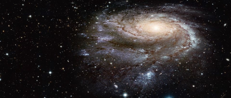 black hole space cosmic nothingess Shutterstock muratart