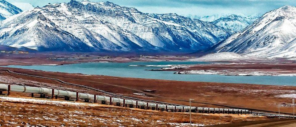 Alaska pipeline Shutterstock/Troutnut
