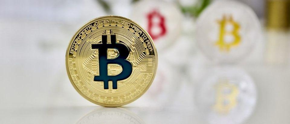 Bitcoin (Credit: Shutterstock)
