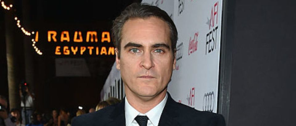 """AFI FEST 2014 Presented By Audi Gala Screening Of """"Inherent Vice"""" - Red Carpet"""