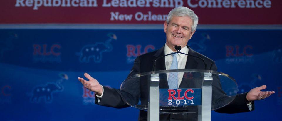 Newt Gingrich Speaking At Event (ShutterStock/Christopher Halloran)
