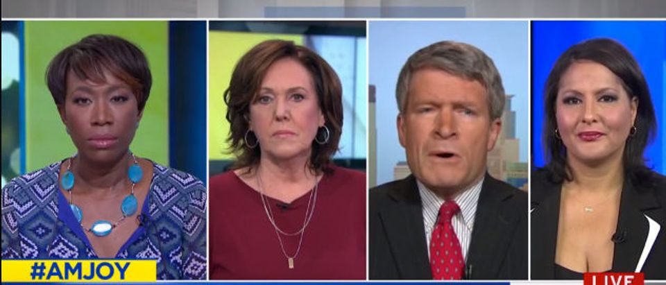 Painter MSNBC screenshot