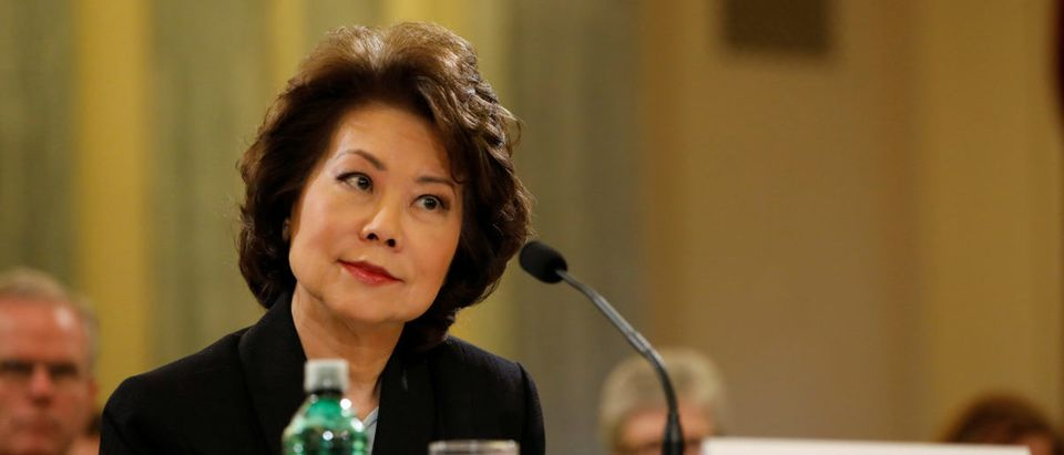 U.S. Secretary of Transportation Elaine Chao testifies before a Senate Commerce, Science, and Transportation Committee hearing on Capitol Hill in Washington, D.C., U.S., June 7, 2017. REUTERS/Aaron P. Bernstein