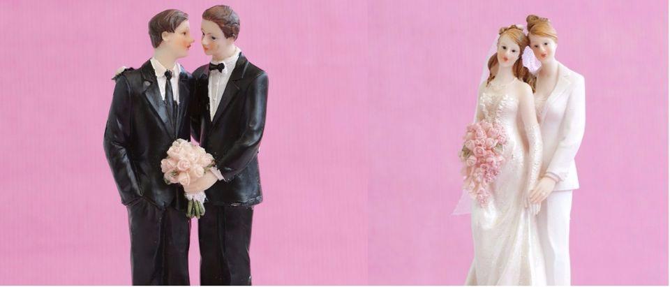 gay marriage collage Shutterstock/Nancy Beijersbergen