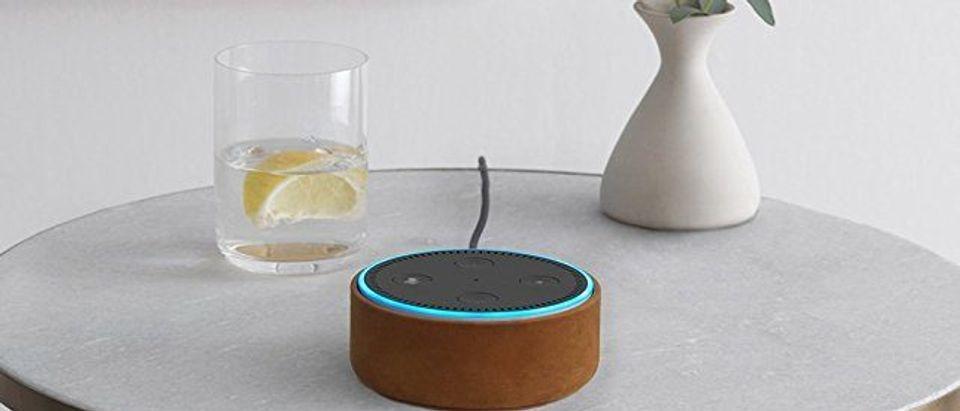Echo Dot (Photo via Amazon)