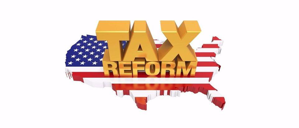 tax reform Shutterstock/Nerthuz