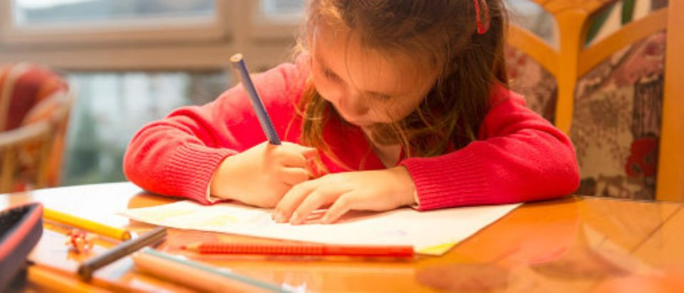 Child doing homework, (Photo: Shutterstock)