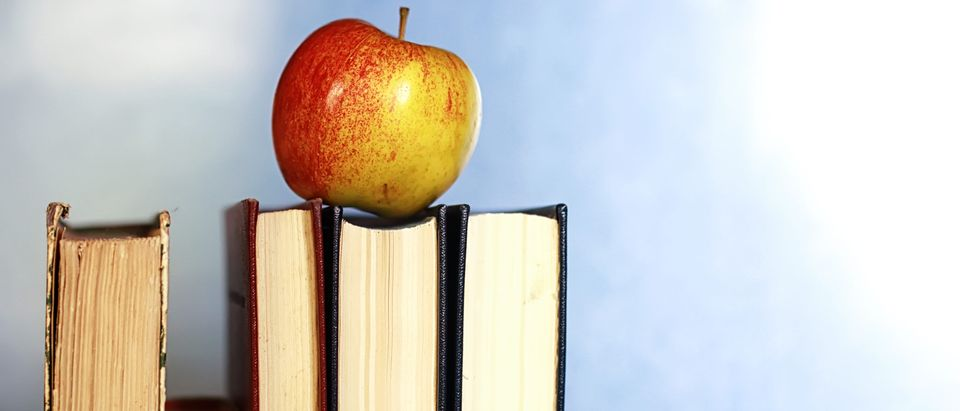 An apple on stacked books. (Shutterstock)