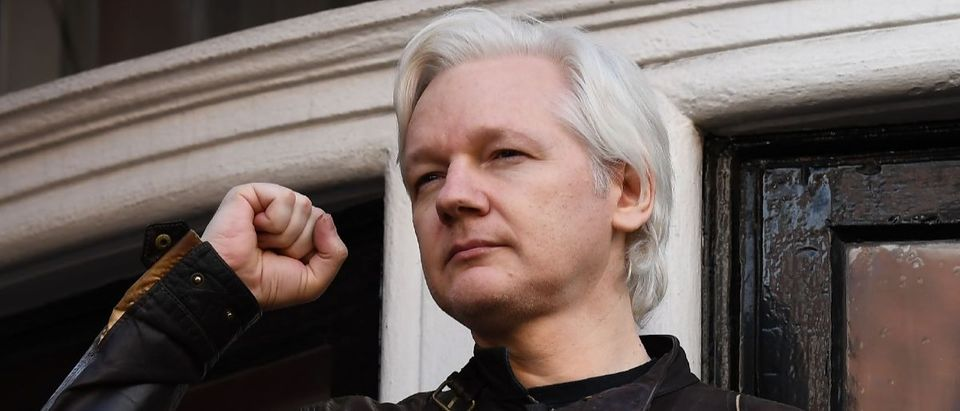 Assange Justin Tallin/Getty Images