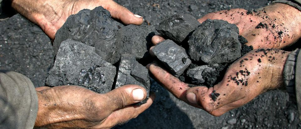 Coal in the hands of miners. (Shutterstock) | Court Forces Stricter Standards On Coal