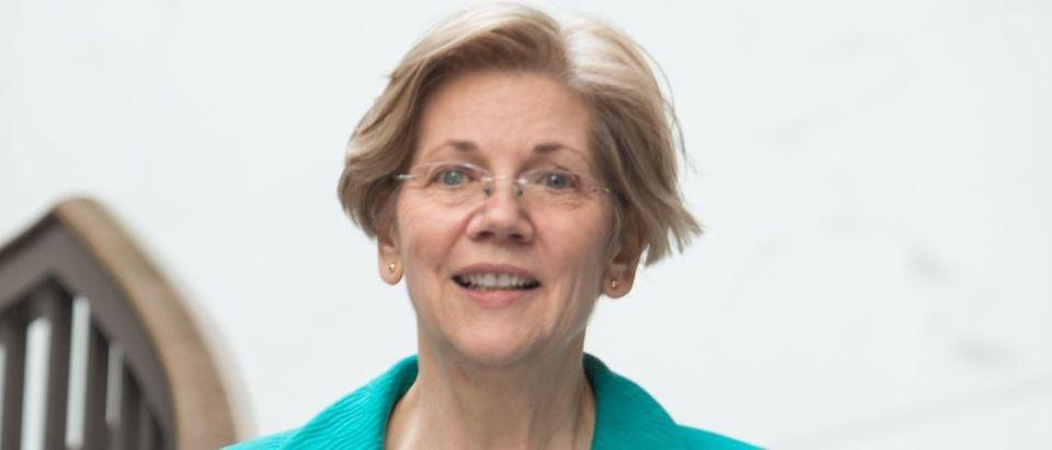 Elizabeth Warren Getty Images/Nicholas Kamm