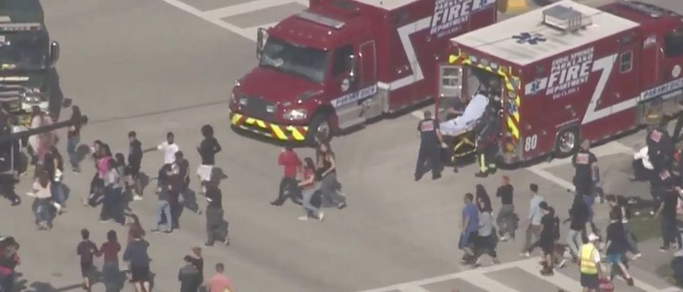 Florida School Shooting (Screen shot/ABC15)