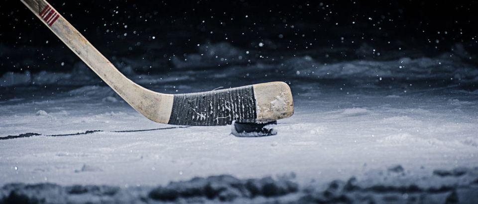 Hockey Puck (Credit: Shutterstock/Vasilev Evgenii)