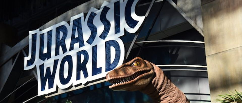 NEW YORK, NY - OCTOBER 10: The Raptor at the Jurassic World Gates at New York Comic Con in celebration of the upcoming Blu-ray and DVD release at Jacob Javits Center on October 10, 2015 in New York City. (Photo by Ilya S. Savenok/Getty Images for Universal Pictures Home Entertainment)