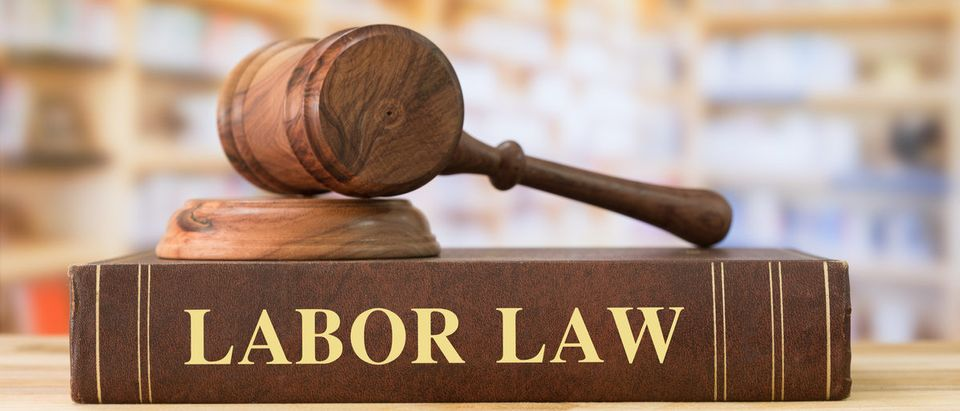 Labor Law books with a judges gavel on desk in the library.