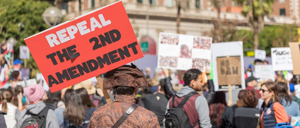 """LOS ANGELES, CALIFORNIA - FEBRUARY 19, 2018: """"Repeal the 2nd Amendment"""" sign held by a protester at the People's Rally Against Gun Violence in Pershing Square.Sonnenberg Shots / Shutterstock.com"""