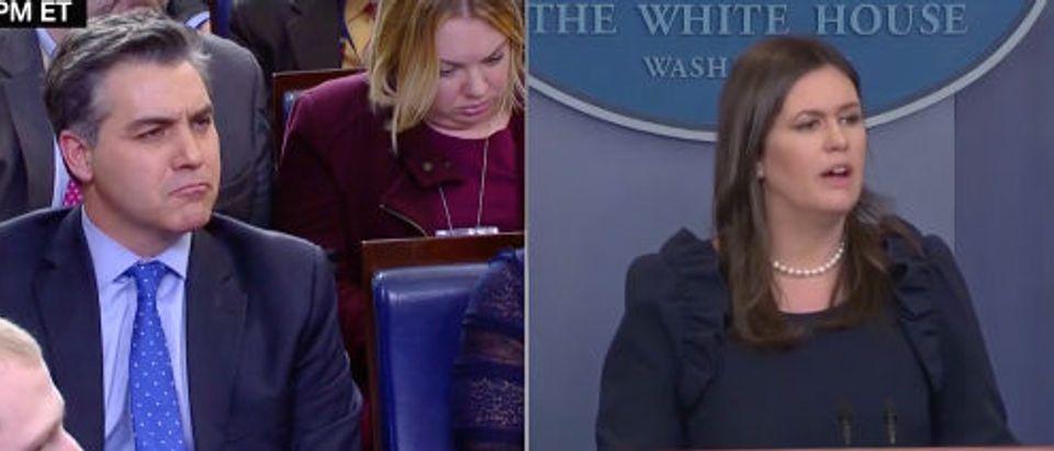 Sanders Acosta CNN screenshot