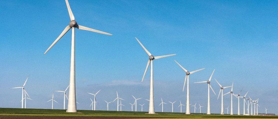 windmills Shutterstock fokke baarssen