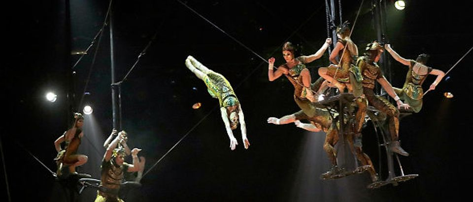 Performers during the Cirque du Soleil OVO dress rehearsal at Royal Albert Hall on January 9, 2018 in London. (Photo by John Phillips/John Phillips/Getty Images)