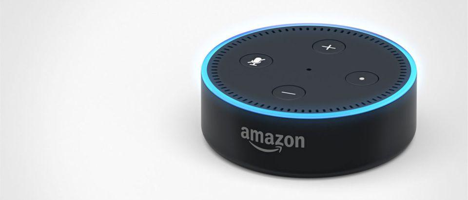 AmazonAlexaSmartSpeaker