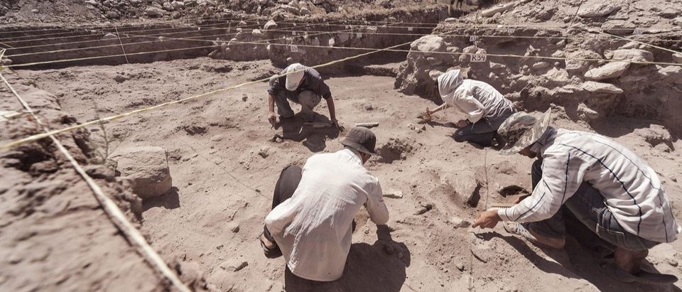 Archaeologist are working in field, with special tools. Shutterstock/ Openfinal
