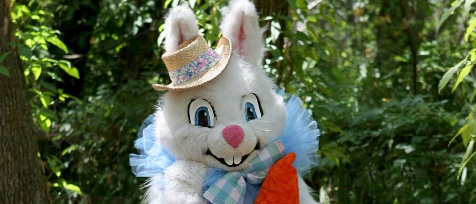 Easter bunny Shutterstock/Lisa F. Young