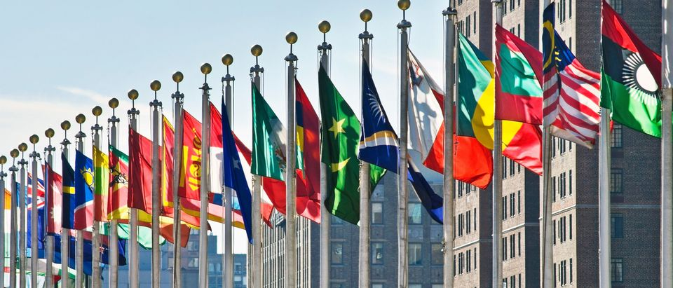 Flags of all nations outside the UN in New York City (Shutterstock/Andre Kazmierski) | UN: Women Should All Be Able To Abort