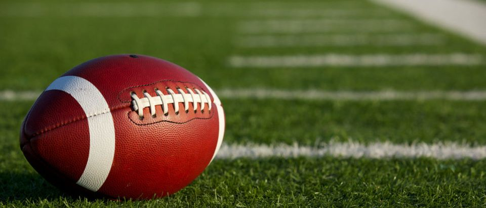 A football rests on a field. (Shutterstock/David Lee)