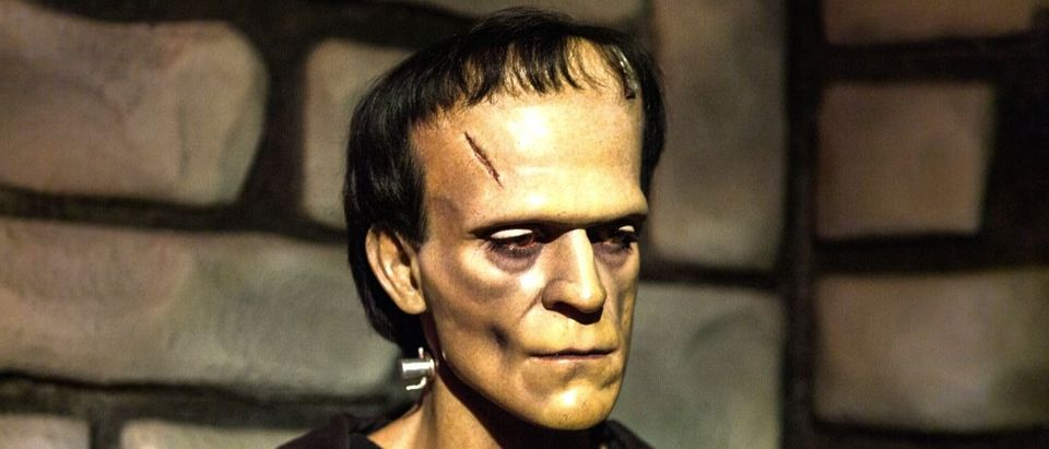 Frankenstein Shutterstock/Anton_Ivanov