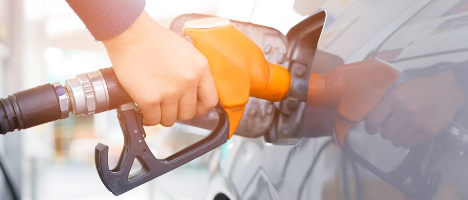 Grey car at gas station being filled with fuel. (Shutterstock)