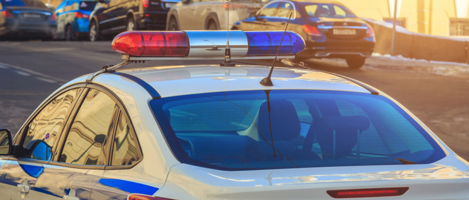 Police_Car_City
