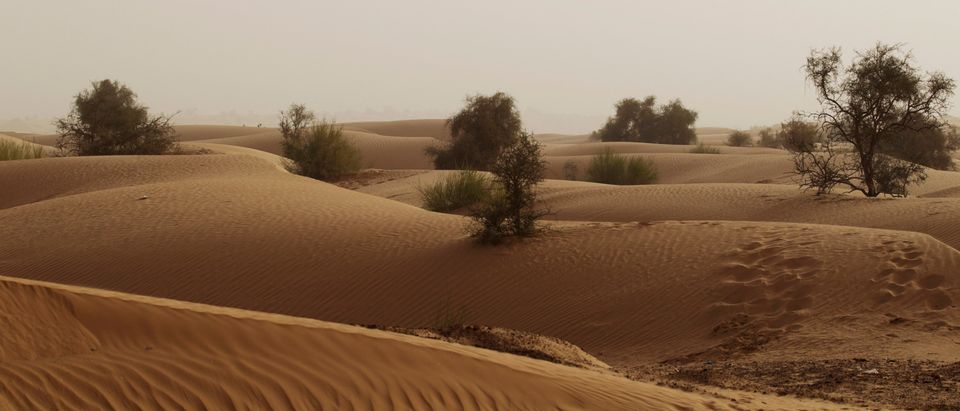 Sand dunes are seen in the Sahara Desert outside the town of Aleg, Mauritania, May 20, 2012. REUTERS/Joe Penney