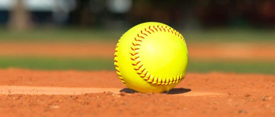 Softball (Credit: Shutterstock)