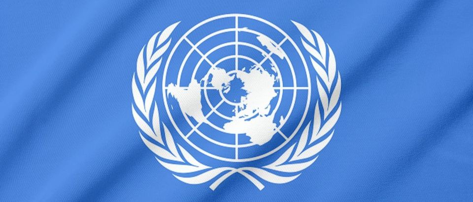 United Nations Shutterstock/Julie Pop