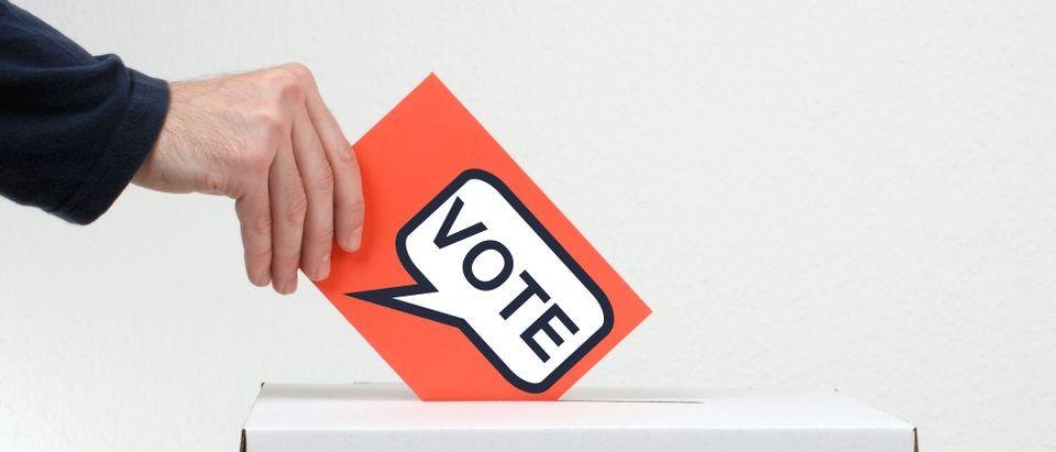 A person puts a vote into a box. (Shutterstock)