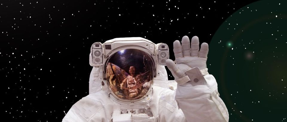 astronaut NASA Shutterstock/Vladi333